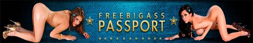 freebigasspassport password